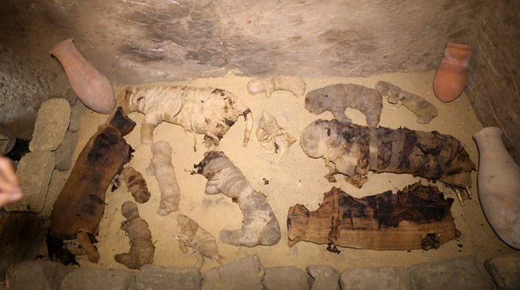 Gatos mumificados são encontrados no Egito (Foto: Divulgação/ Ministério das Antiguidades)