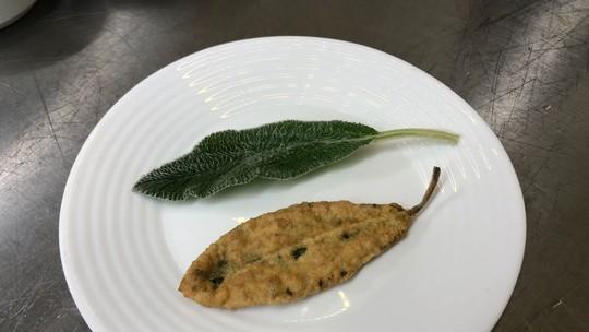 Confira receitas com plantas alimentícias nada convencionais