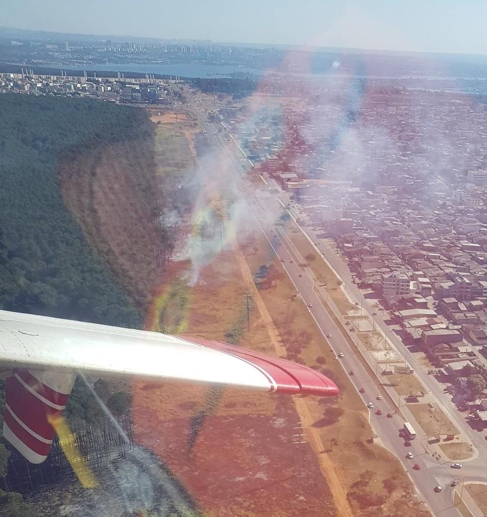 Incêndio florestal na DF-250, próximo ao Itapoã, no Distrito Federal  — Foto: Corpo de Bombeiros do DF/Divulgação