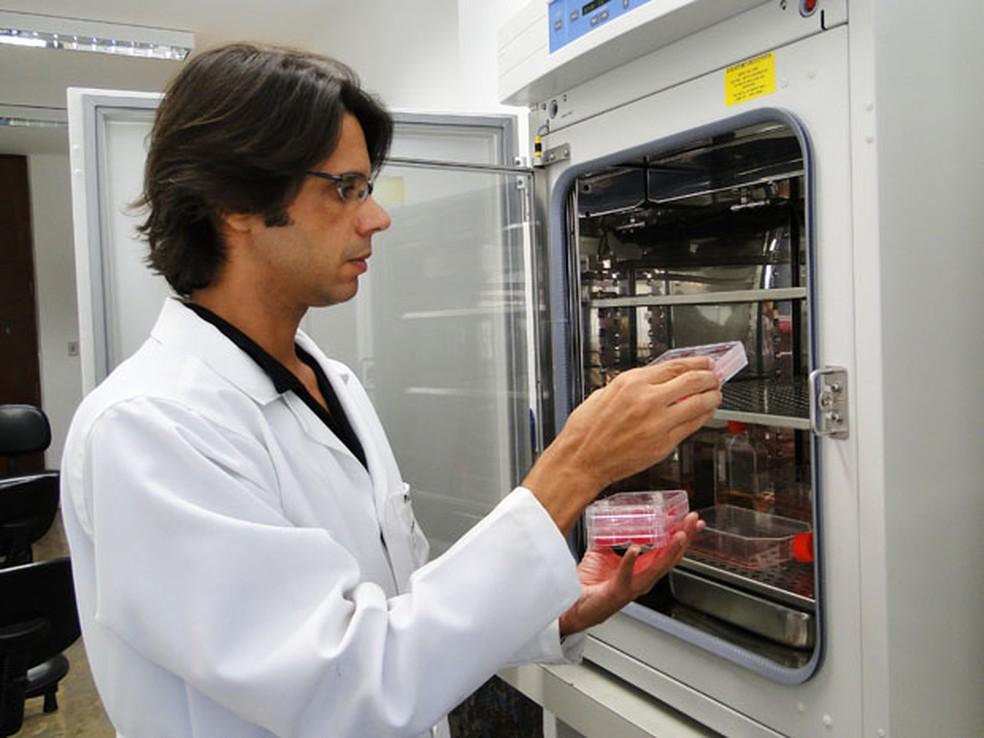 Pesquisador Flávio Guimarães da Fonseca em laboratório da Universidade Federal de Minas Gerais. (Foto: Flávia Cristini/ G1)