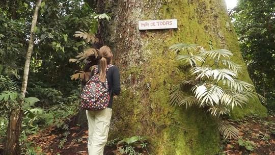 'Partiu' visita Reserva Mamirauá, Tefé e Alvarães, no Amazonas