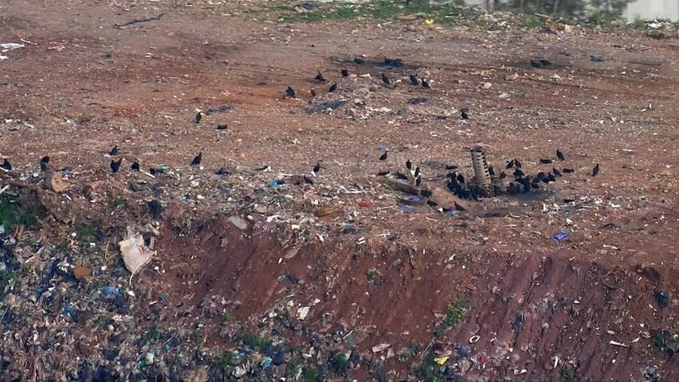 Aterro de Embu das Artes é o único considerado inadequado pela Cetesb, dentro da região metropolitana — Foto: Reprodução/TV Globo