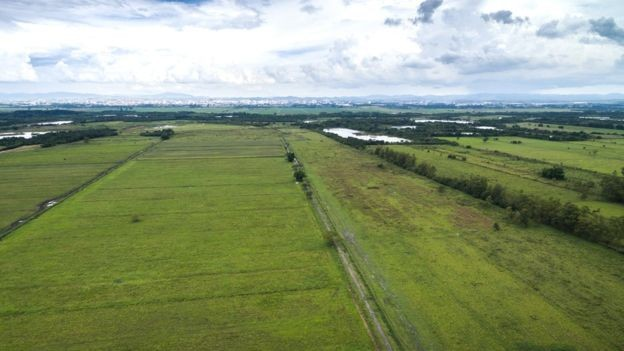 Vista aérea do interior do Brasil: terras no país e em outros da América Latina foram compradas por Harvard (Foto: Getty Images via BBC)