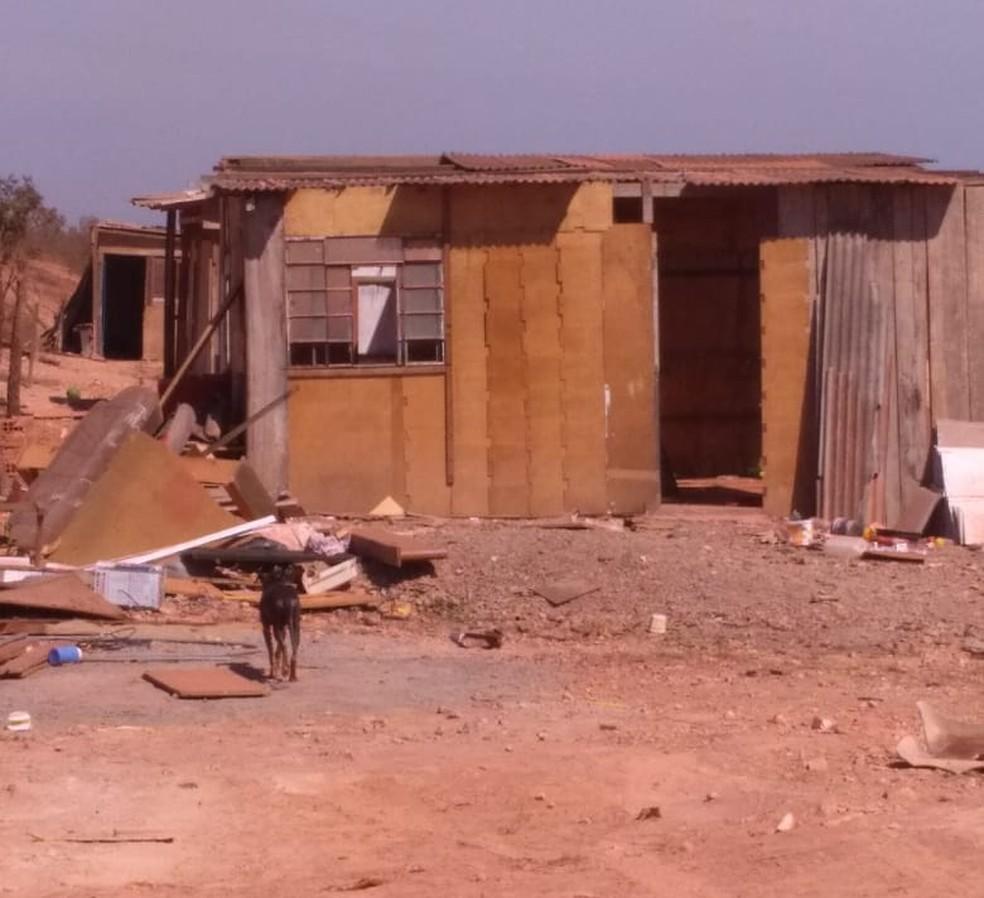 Área foi desapropriada e cachorros abandonados (Foto: ONG CãoAmor/Divulgação)