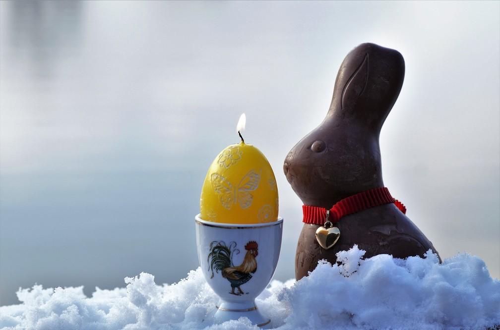 Desde o Egito antigo, o coelho já era sinônimo de fertilidade (Foto: Ivabalk/Pixabay)