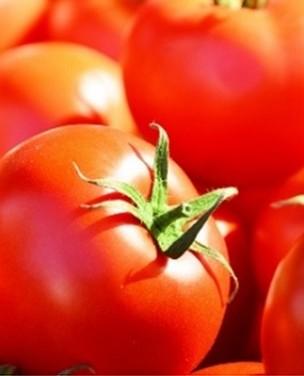 Aprenda curiosidades sobre o tomate