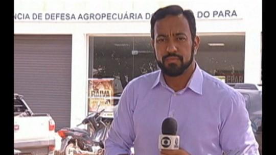 Operação prende dois servidores da Adepará por corrupção, no Pará