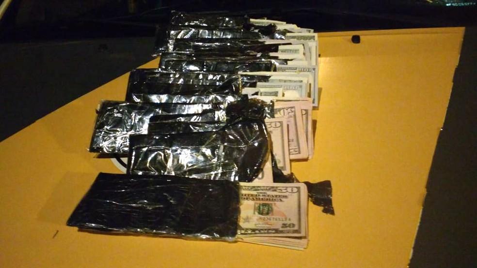 Dólares foram apreendidos com peruano em Santa Cruz do Rio Pardo (Foto: Polícia Rodoviária/Divulgação )