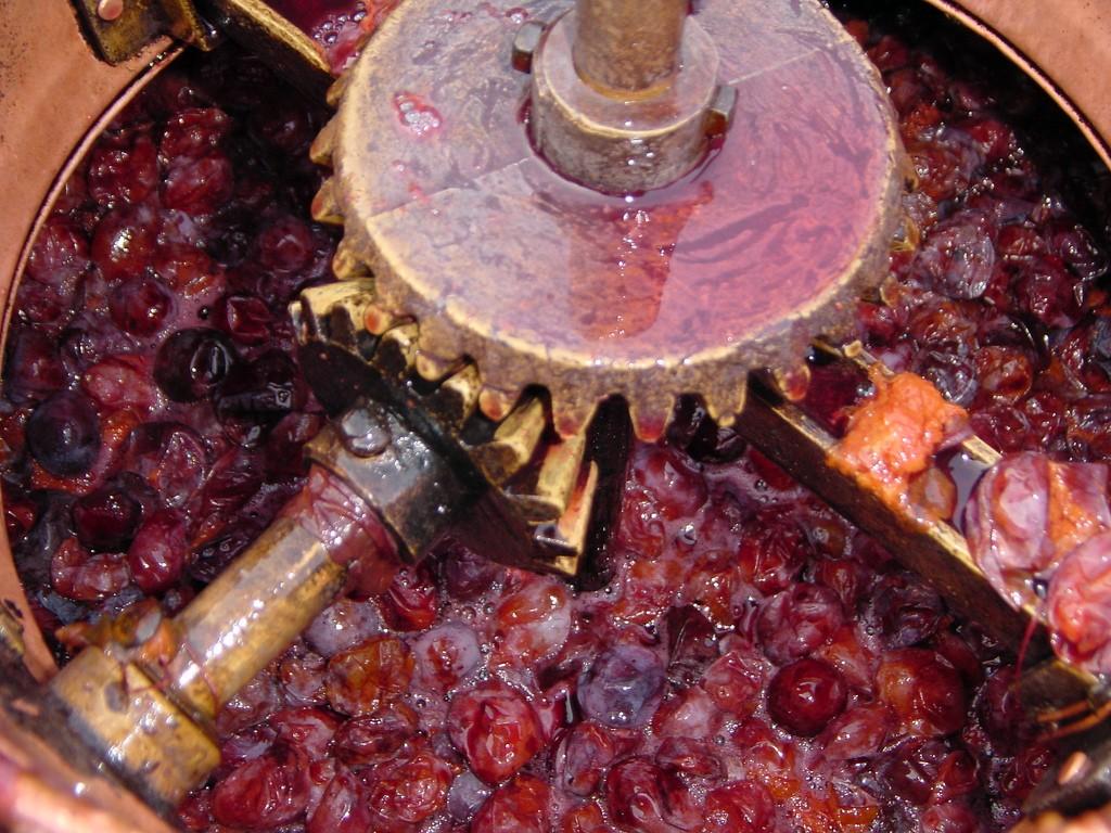 Início do processo de fermentação para produção da rakija (Foto: Flickr/ brankomaster)