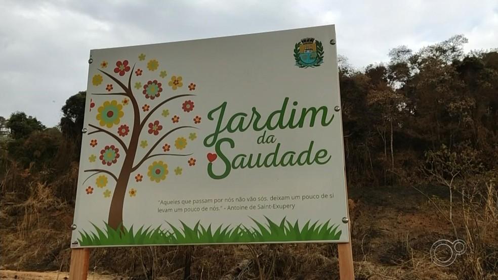 'Jardim da Saudade' homenageia vítimas da Covid-19 com plantio de árvores em Mairinque — Foto: Reprodução/TV TEM