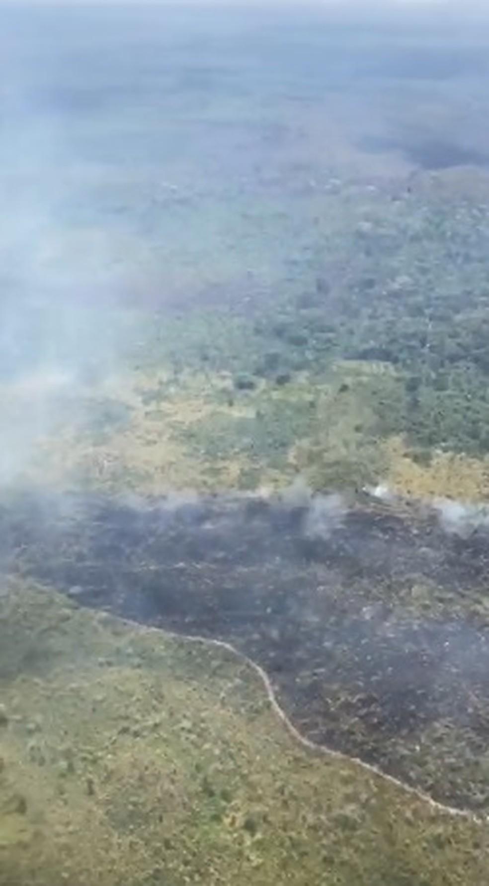 Terra Indígena Araribóia, no Maranhão, sofre queimada — Foto: Divulgação / Governo do Maranhão