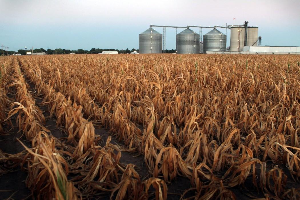 Resultado de imagem para Unica destaca redução de emissões com uso do biocombustível