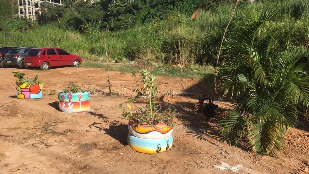 Pequeno jardim foi criado por estudantes em uma área estava virando lixão; espaço foi batizado com o nome de Moa do Katendê — Foto: Valma Silva / G1 BA