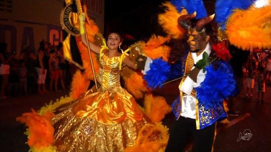 Escola Unidos do Roçado de Dentro leva magia dos personagens infantis para a avenida, em Várzea Alegre