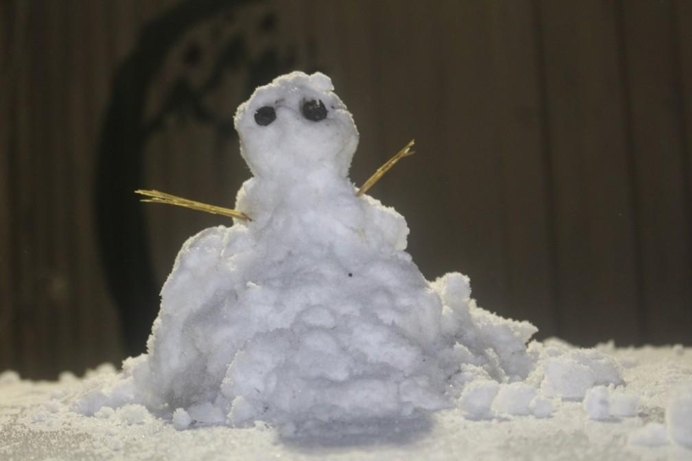 Boneco de neve em Bom Jardim da Serra na noite desta quinta-feira (20) — Foto: Onéris Lopes/Amures