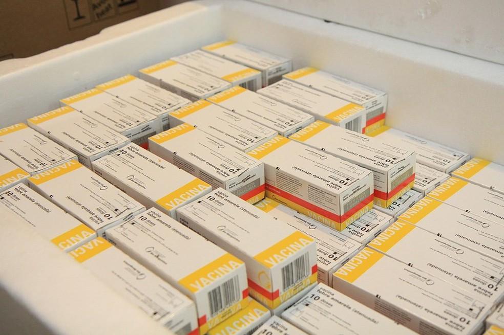 Doses da vacina contra a Febre Amarela em São José dos Campos (Foto: Divulgação/ Prefeitura de SJC)