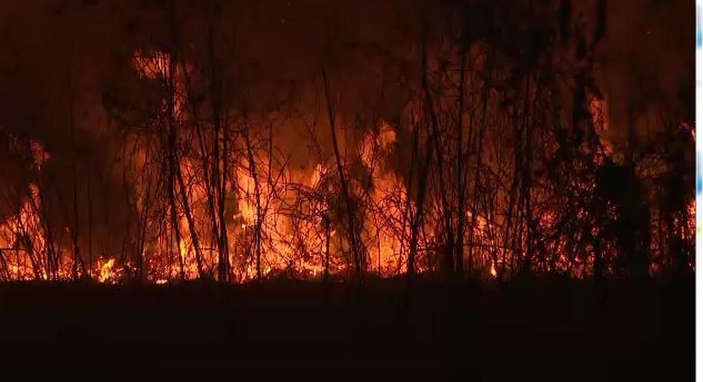 Paredão de fogo se estende por mais de 100 metros em área no interior do Acre â?? Foto: Reprodução/Rede Amazônia Acre