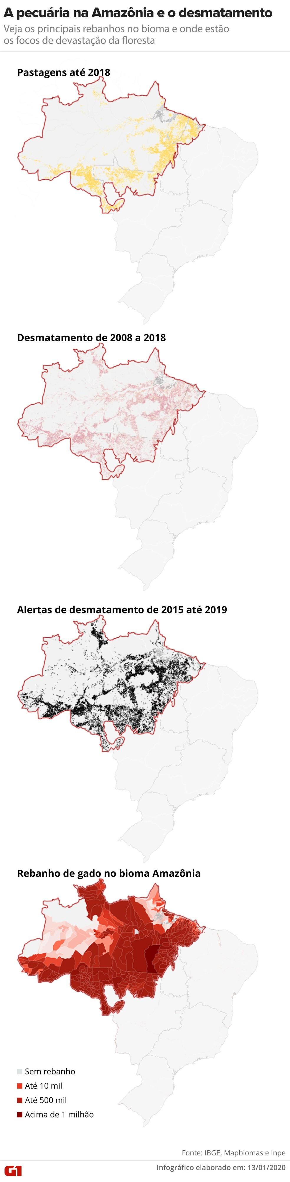 A pecuária e o desmatamento — Foto: Guilherme Pinheiro e Amanda Paes/G1