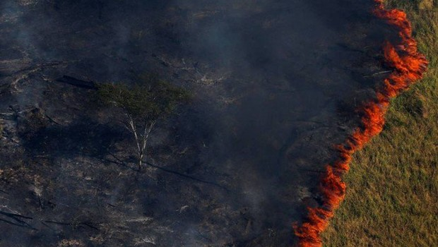 Volume inédito de incêndios destrói áreas protegidas e leva fogo a reservas de mata fechada ; queimada ; meio ambiente ; gases de efeito estufa ;  (Foto: Bruno Kelly/Agência O Globo)