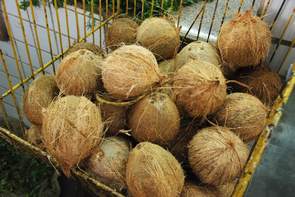 Unidade do coco seco tem preços encontrados entre R$ 2,99 e R$ 7,89 em João Pessoa — Foto: Felipe Gesteira/Jornal da Paraíba