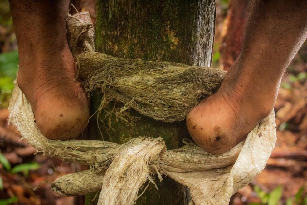 Documentário 'Açaí, Pérola Negra' foi gravado em Guajará-mirim, Rondônia — Foto: Joilson Arruda /arquivo pessoal