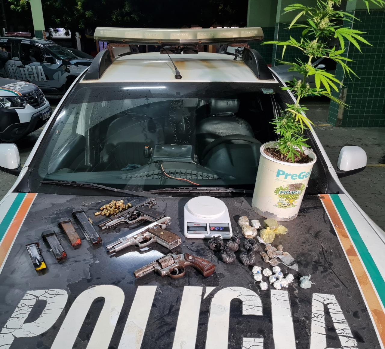 PM apreende planta de maconha, drogas e armas escondidas em terreno abandonado, em Fortaleza