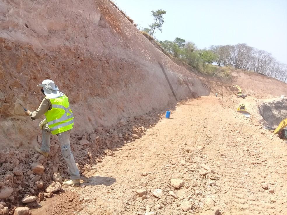 Paleontólogo William Nava no local onde os fósseis foram localizados em rodovia na região de Marília — Foto: Arquivo pessoal