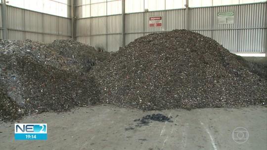 Óleo no Litoral: chega a 1.561 toneladas volume retirado de praias e rios de Pernambuco