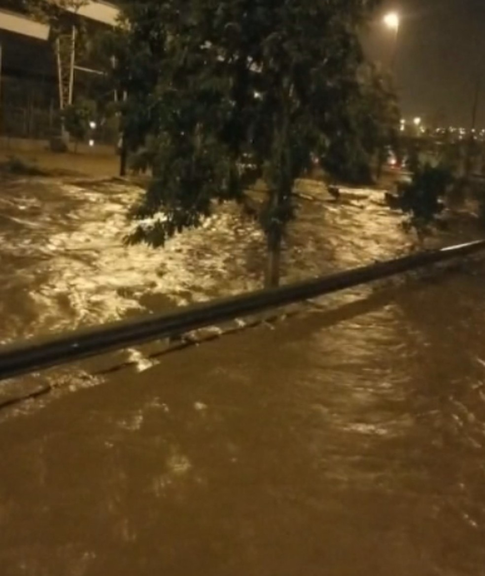 Rio Bauru transbordou com a chuva — Foto: Reprodução/TV TEM