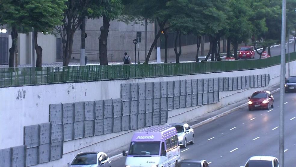 Jardim vertical na 23 de Maio (Foto: Reprodução/TV Globo)