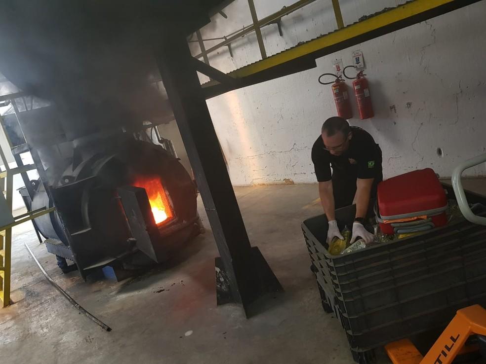 Quase 1,5 toneladas de drogas foram incineradas pela PF na Grande Natal — Foto: PF/Divulgação
