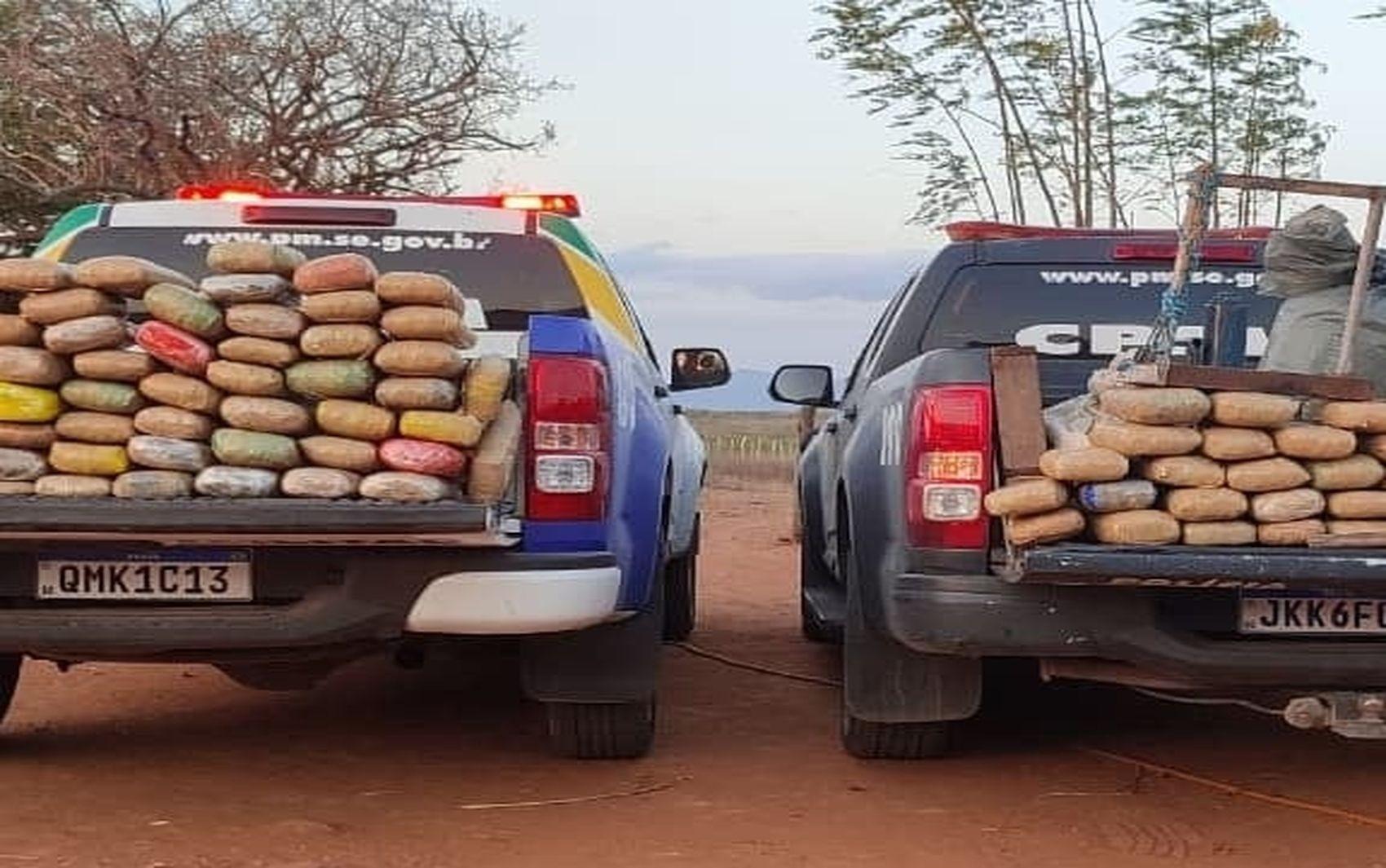 Polícia apreende mais de 142 quilos de maconha no Alto Sertão de Sergipe