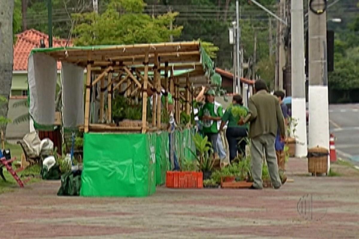 Feira do Produtor Rural, em Guararema, anima agricultores e consumidores