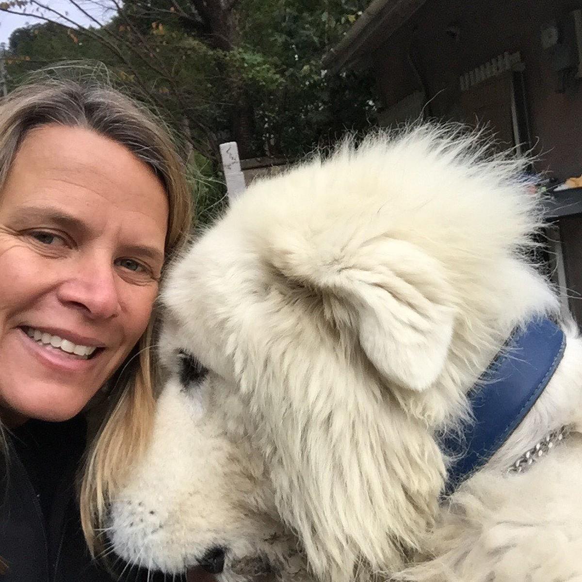 Mariana Becker revela paixão por animais: 'É uma terapia' - gshow