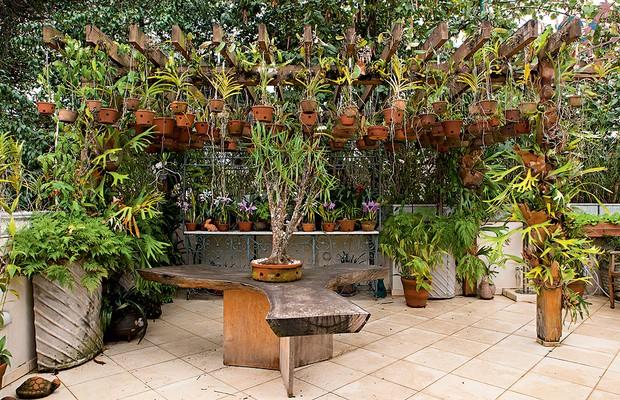 A paixão por orquídeas fez com que o morador dessa casa em São Paulo criasse um pergolado na laje. Mais de cem vasos de barro ficam suspensos por ganchos presos à estrutura. Alguns são presos à treliça da varanda (Foto: Edu Castello/Editora Globo)