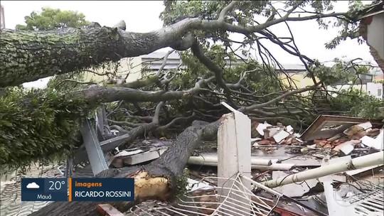 Chuva forte derruba árvores, destelha imóveis e cancela concurso em São Caetano do Sul