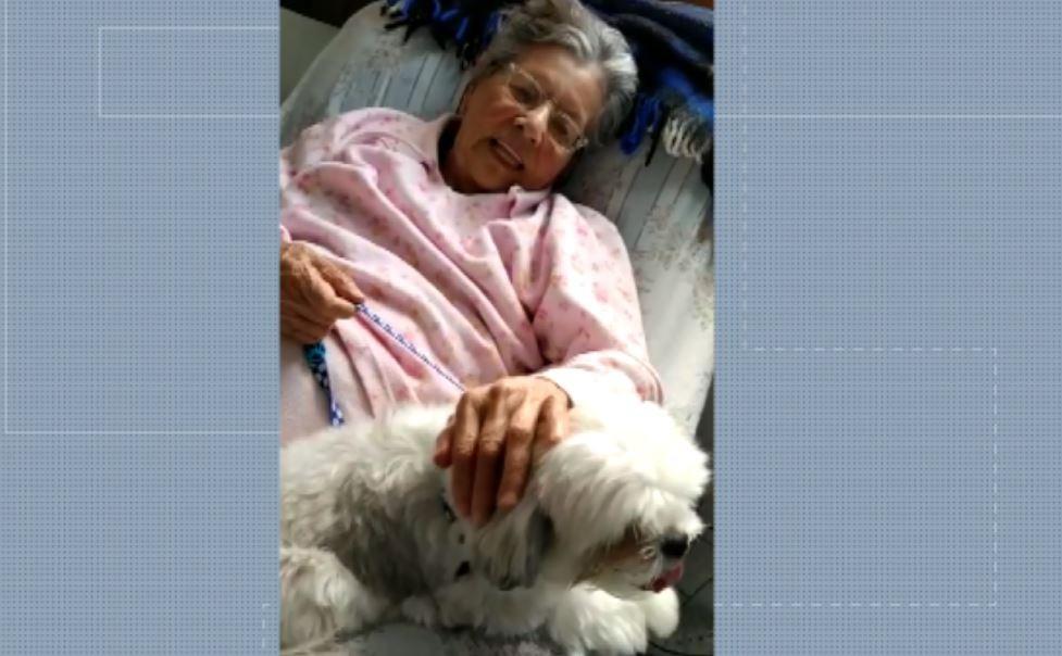 Cães visitam idosos para diminuir solidão durante isolamento em asilo de Pouso Alegre, MG