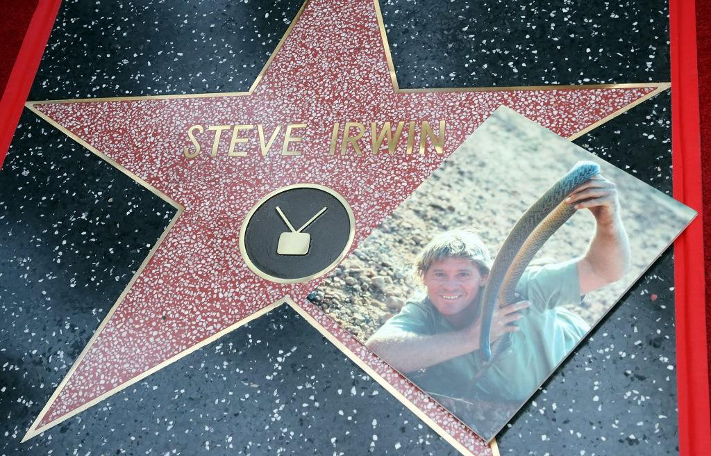 Steve Irwin (Foto: Getty Images)