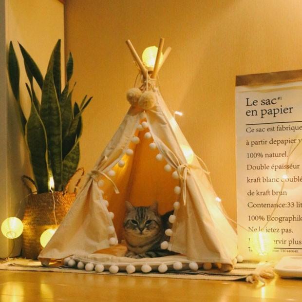 Dê um cantinho particular para o seu gato: 11 ideias de casinhas confortáveis (Foto: Reprodução/ Amazon)