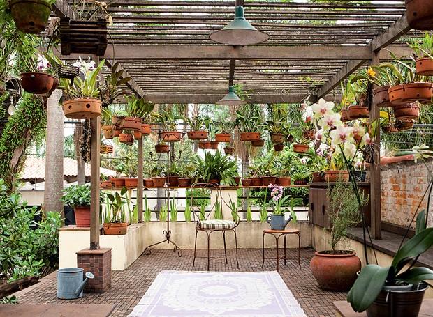 """Não havia espaço suficiente no quintal desta casa para expor a coleção de orquídeas do morador.  A solução encontrada pela paisagista Susana Udler foi aproveitar a laje sobre a garagem. """"Integrei esse espaço ao resto da casa e desenhei uma pérgola de ipê  (Foto: Edu Castello)"""