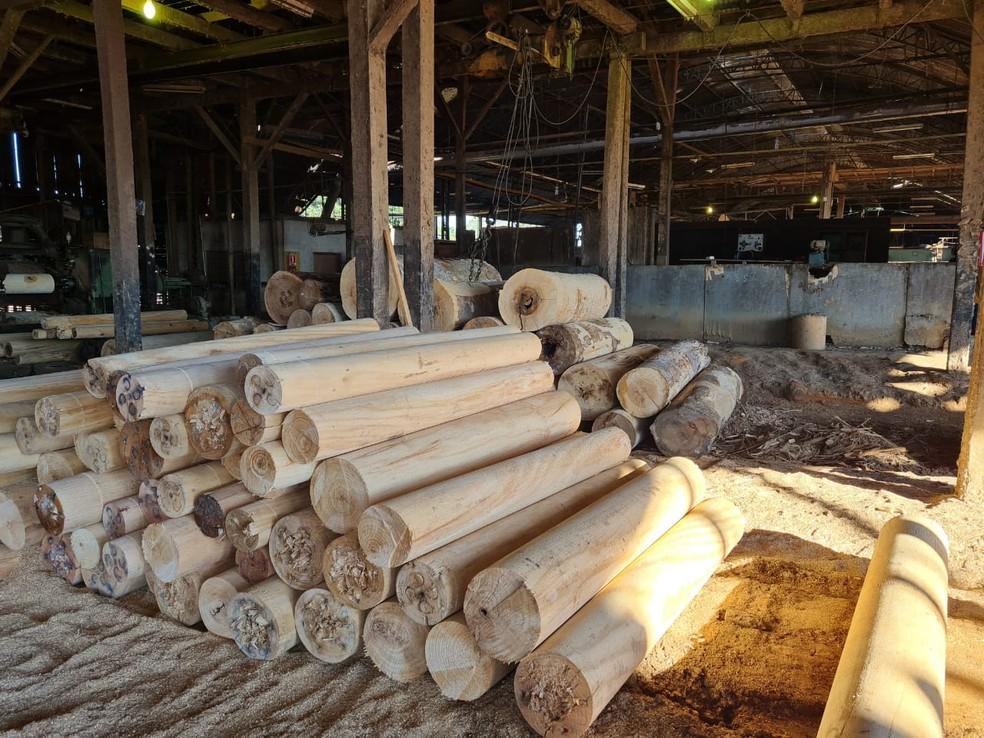 Madeireiras são investigadas por fraudes no sistema DOF, através da movimentação virtual fraudulenta de créditos florestais. — Foto: Polícia Federal/Divulgação