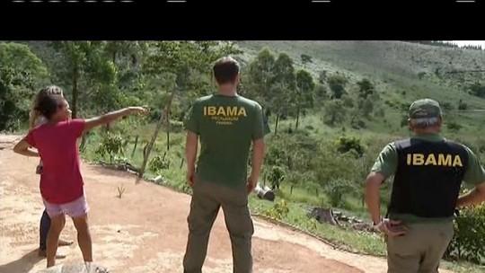 Ibama apura denúncias de que macacos estão sendo mortos em MG