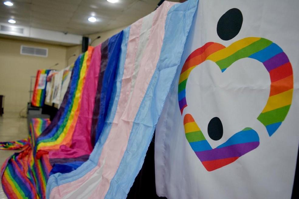 Bandeiras LGBT — Foto: Assessoria