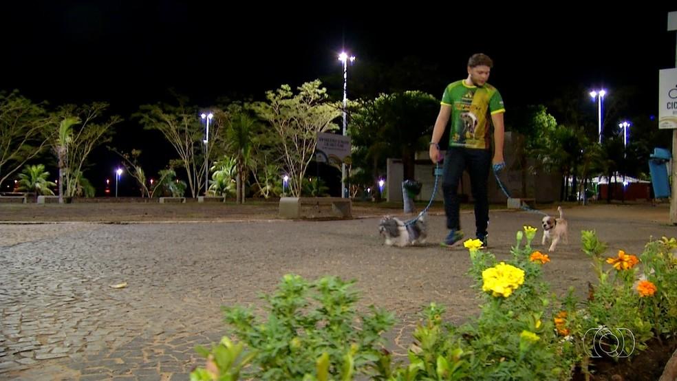 Passeador ganha até R$ 4 mil por mês para cuidar de animais  (Foto: Reprodução)