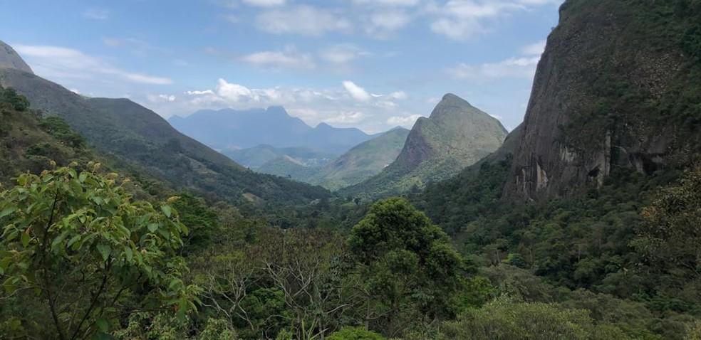 Mata Atlântica no Parque Nacional da Serra dos Órgãos, em Petrópolis, no Rio de Janeiro. — Foto: Patrícia Figueiredo / G1
