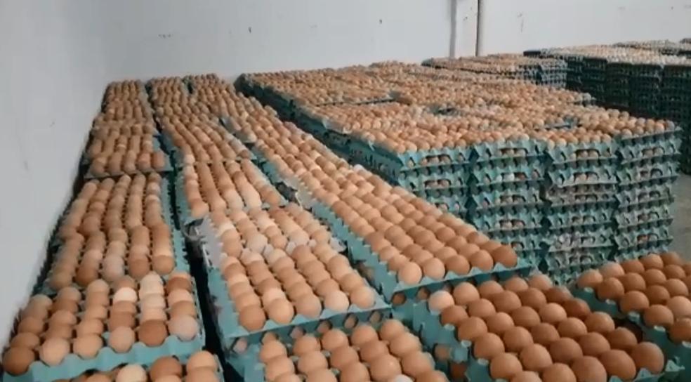 Ovos em depósitos no DF serão descartados por falta de transporte (Foto: Kenzo Machida/TV Globo)