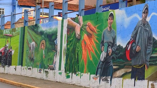 Artista plástico cria mural gigante com personagens do campo