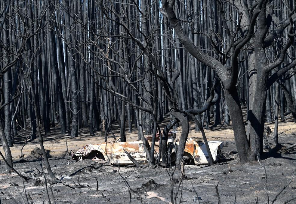Danos das queimadas na Ilha de Kangaroo, na Austrália, em 6 de janeiro de 2020 — Foto: David Mariuz/AAP Image/via Reuters