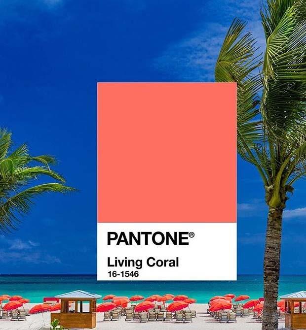 Pantone revela a cor de 2019: Living Coral (Foto: Instagram/ Reprodução)