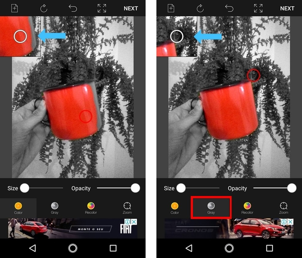 Ferramenta de zoom para colorir e deixar área da foto em preto e branco (Foto: Reprodução/Raquel Freire)